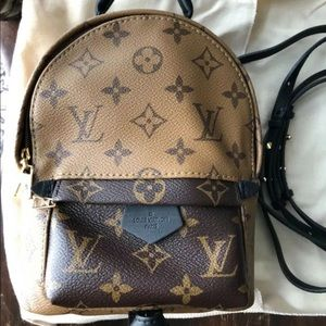 Louis Vuitton Palm Springs Mini Backpack R…